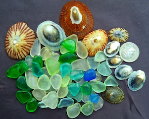 Sea Glass with Limpets, $32 3/4